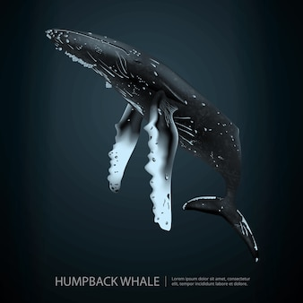 Ilustración de ballena jorobada bajo el mar