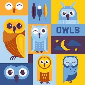 Ilustración de banner de búhos