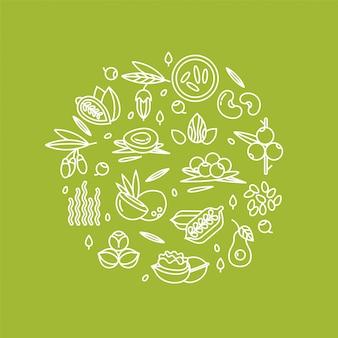 Ilustración de bayas, nueces, frutas y semillas de verduras