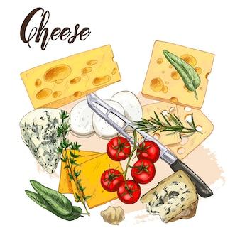 Ilustración de boceto realista a todo color de queso y hierbas con albahaca y tomates