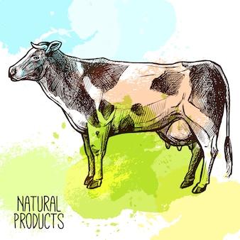 Ilustración de boceto de vaca