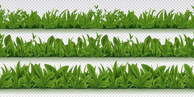 Ilustración de borde de hierba transparente realista
