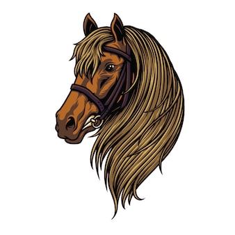 Ilustración de cabeza de caballo