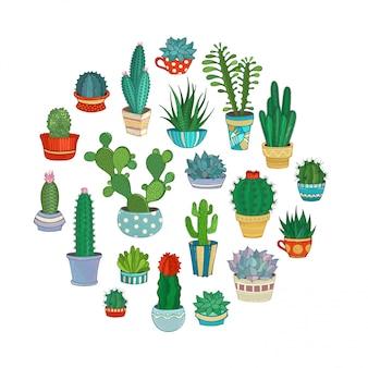 Ilustración de cactus y suculentas.