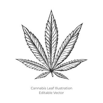 Ilustración de cáñamo o cannabis dibujada a mano