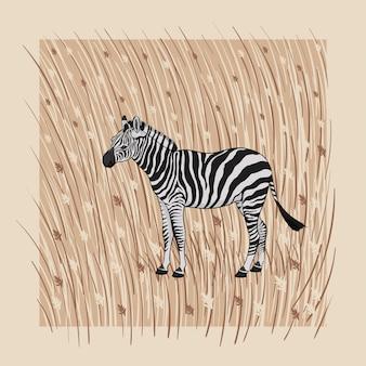Ilustración. una cebra de dibujos animados sobre un fondo beige con hierba marrón y flores.