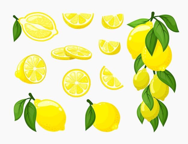 Ilustración de cítricos amarillos frescos jugosos