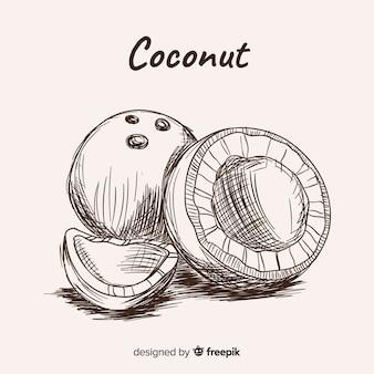 Ilustración coco dibujada a mano