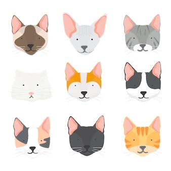 Ilustración de la colección de gatos.