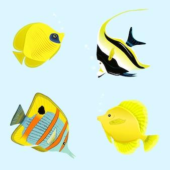 Ilustración de colección de peces tropicales