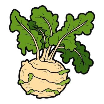 Ilustración de color vectorial, verduras de colores, colinabo