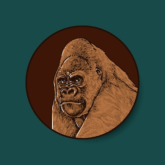 Ilustración coloreada de gorila