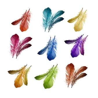 Ilustración de coloridas plumas de aves suaves y esponjosas en rojo, turquesa, amarillo, magenta, azul, violeta, naranja, verde, marrón aislado sobre fondo blanco.