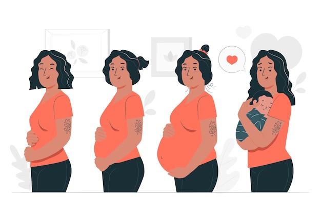 Ilustración de concepto de etapas de embarazo