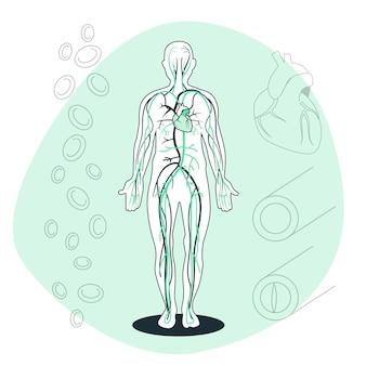Ilustración del concepto de sistema circulatorio