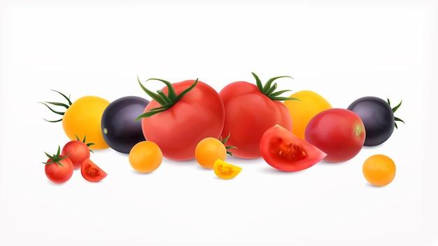 Ilustración de conjunto realista de tomates