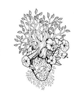 Ilustración del corazón anatómico con flor