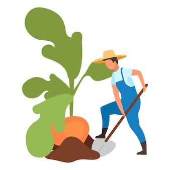 Ilustración de cosecha de otoño.