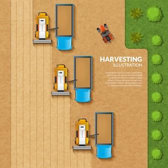 Ilustración de cosecha vista superior