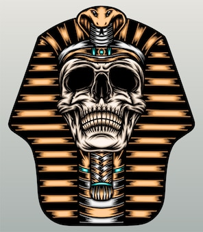 Ilustración del cráneo del faraón.
