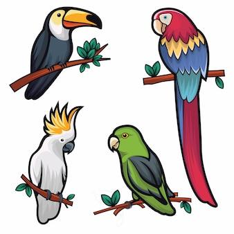 Ilustración de cuatro pájaros frescos