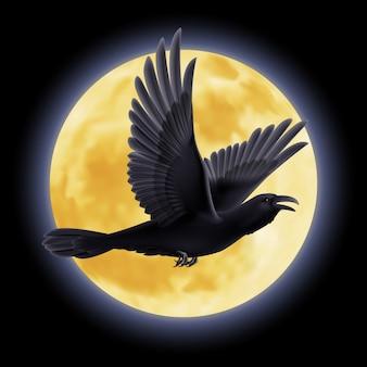 Ilustración de cuervo negro