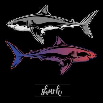 Ilustración de tiburón