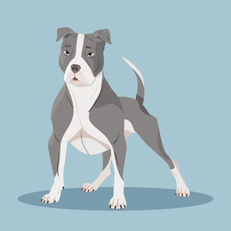 Ilustración detallada de pitbull lindo