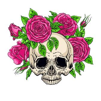 Ilustración dibujada a mano de la anatomía del cráneo humano con una corona de rosas