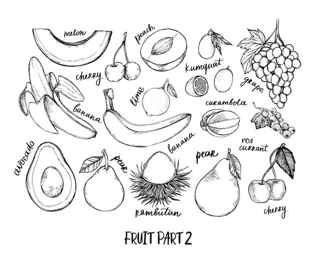 Ilustración dibujada a mano - frutas tropicales y exóticas. melón, uva, plátano, lima
