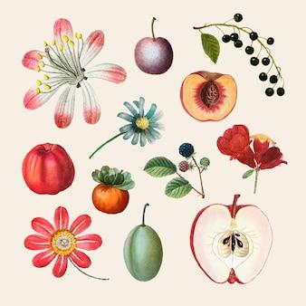 Ilustración de dibujado a mano conjunto vintage de frutas y flores