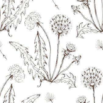 Ilustración de dibujado a mano de flores silvestres de flores de diente de león.