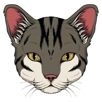 Ilustración de dibujos animados de cabeza de gato sobre fondo blanco