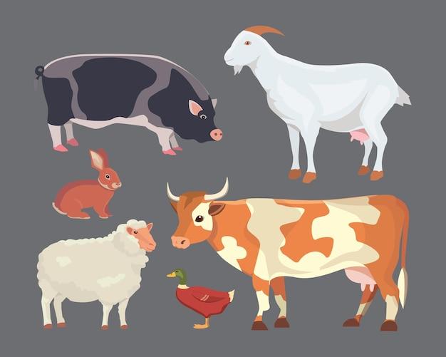 Ilustración de dibujos animados conjunto de animales de granja aislados sobre fondo blanco.