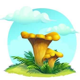 Ilustración de dibujos animados rebozuelos de setas en la hierba bajo el cielo con nubes