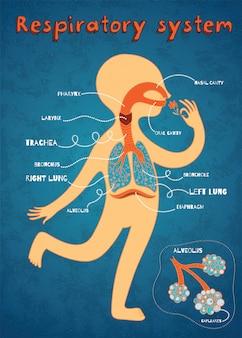 Ilustración de dibujos animados de vector del sistema respiratorio humano para niños