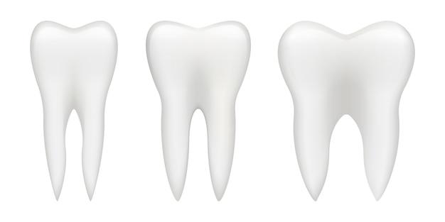 Ilustración de diente aislado sobre fondo blanco