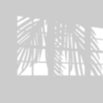 Ilustración del efecto de superposición de sombra tropical realista.