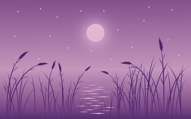 Ilustración de escena nocturna con hierba, luna y estrellas