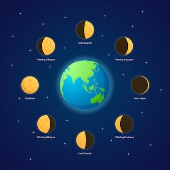 Ilustración de fases de la luna
