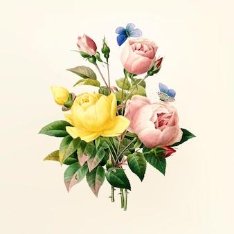 Ilustración de la flor de la vendimia