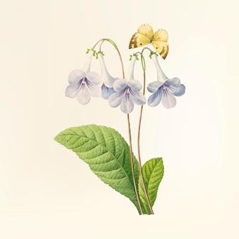 Ilustración de flor vintage