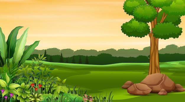 Ilustración de fondo verde paisaje natural