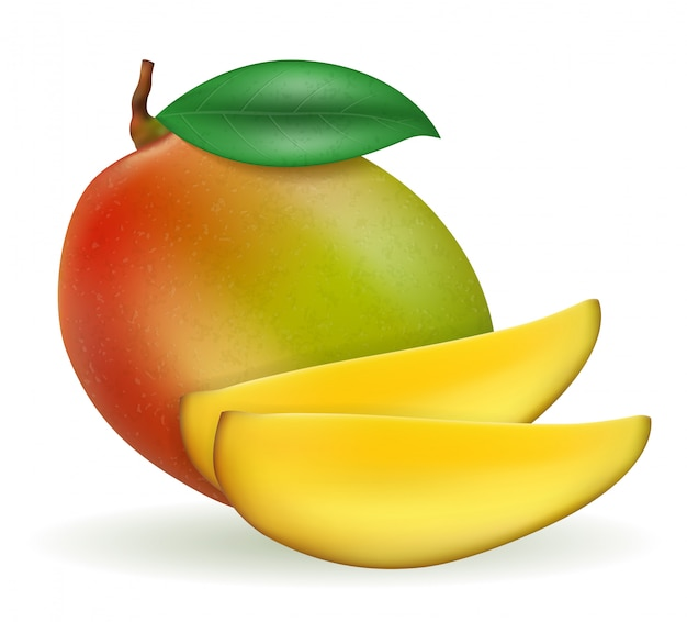 Ilustración de fruta exótica madura fresca de mango