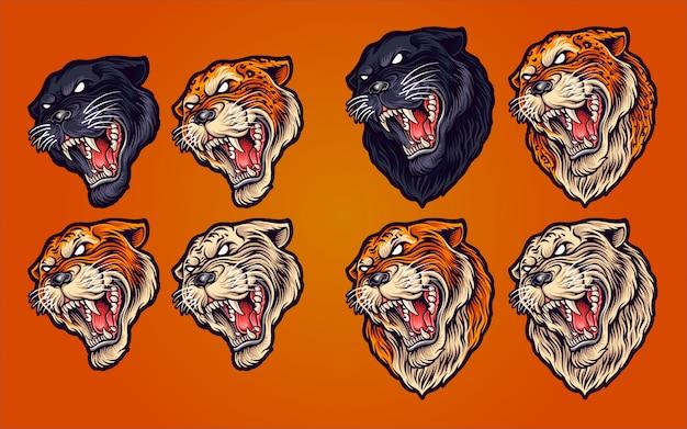 Ilustración de gato salvaje en set tigre, tigre blanco, pantera y leopardo