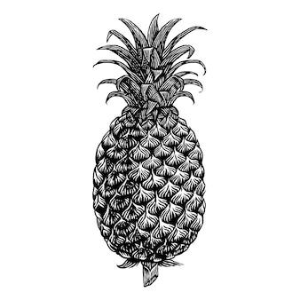 Ilustración de grabado dibujado a mano de fruta de piña