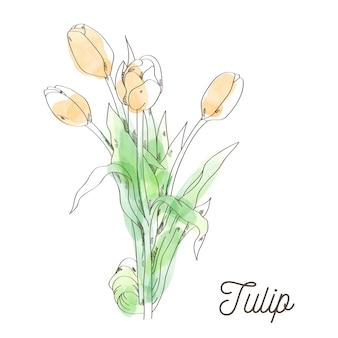 Ilustración hermosa del tulipán en el fondo blanco