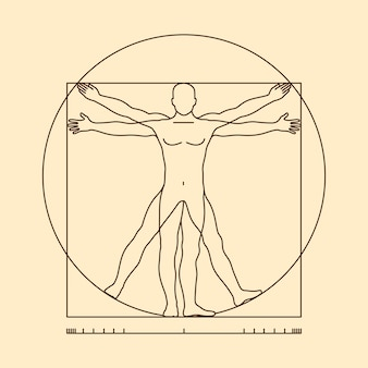 Ilustración del hombre de vitruvio