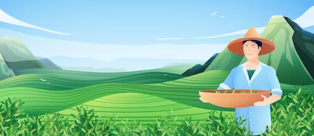 Ilustración horizontal de producción de té natural con hombre chino ocupado cosechando en la ilustración plana de plantación de té