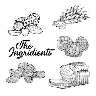 La ilustración de los ingridients